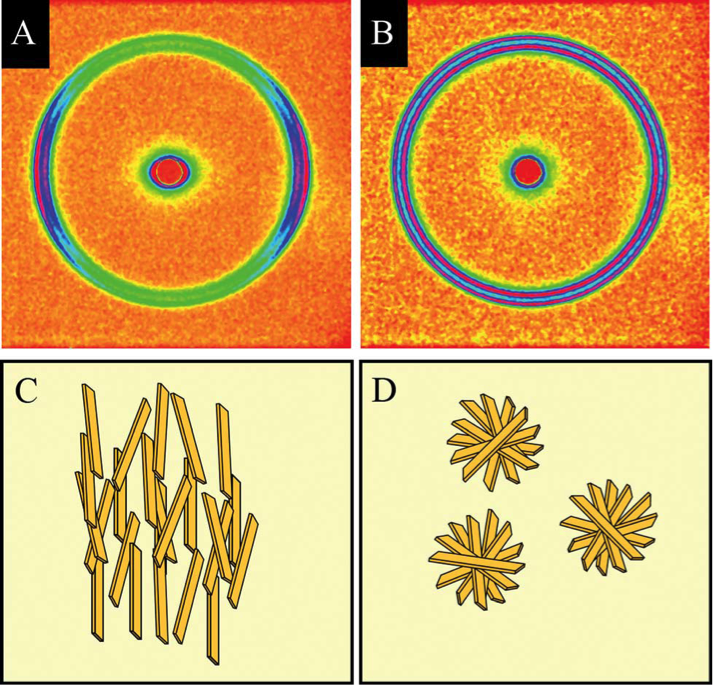 X-ray diffraction patterns reveal the orientation of fat crystals. The distribution and directionality of these crystal nanostructures (parallel to the shear field in C, randomly arranged in D) affects the flavor and texture of foods.