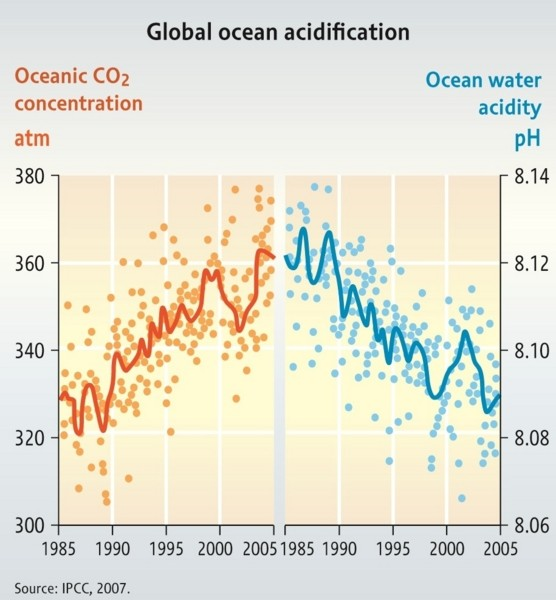 As CO2 in the ocean goes up, pH goes down