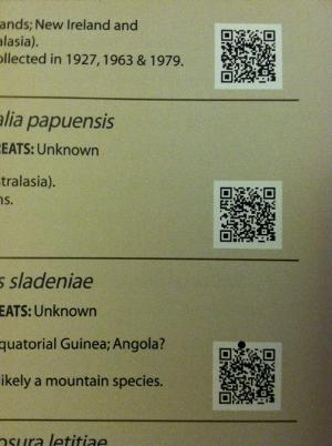 QR codes bring you to the Birlife International database entry for that bird.