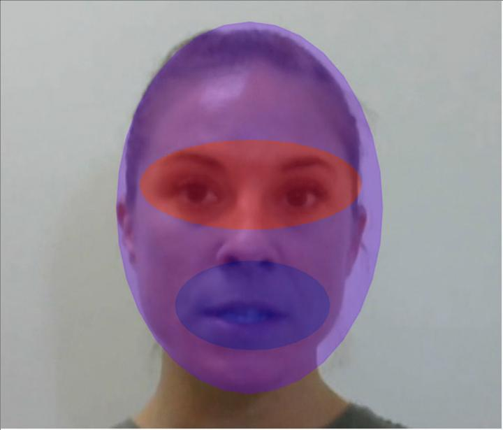 Three areas of interest for fixation analyses: full face (purple), eyes (red) and mouth (blue). Credit:  Florida Atlantic University