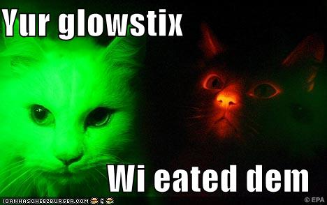 Glow in the dark cats