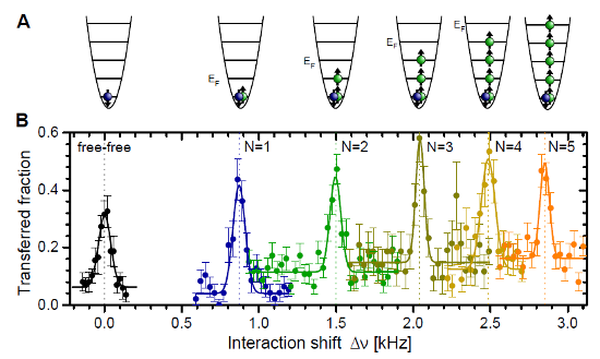 Part of Fig. 2 from the arxiv version of the paper by Wenz et al.