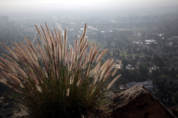 A hazy view of Riverside, CA from the slopes of Mt. Rubidoux.