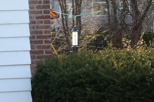 The empty bird feeder at Chateau Steelypips glowing in the morning light.