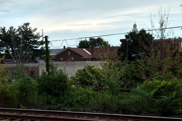 Loops in the power line behind the Schenectady Amtrak station look like glasses.