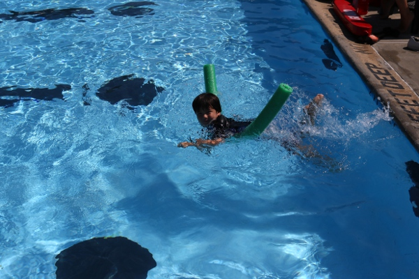 The Pip swimming with a noodle at the Niskayuna town pool.
