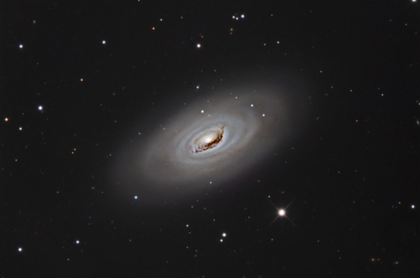 Image credit: S. Reilly at Dogwood Ridge Observatory, via http://www.astral-imaging.com/M64-Redo-Full.htm.