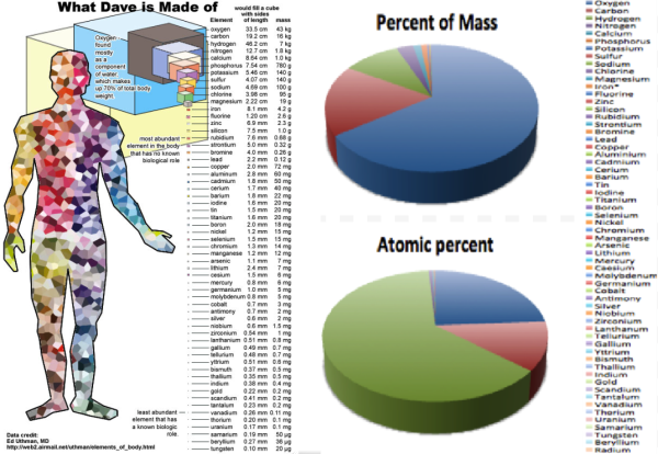The composition of the human body, by atomic number and by mass. Images credit: Ed Uthman, M.D., via http://web2.airmail.net/uthman/ (L); Wikimedia Commons user Zhaocarol (R), under c.c.a.-s.a.-3.0.