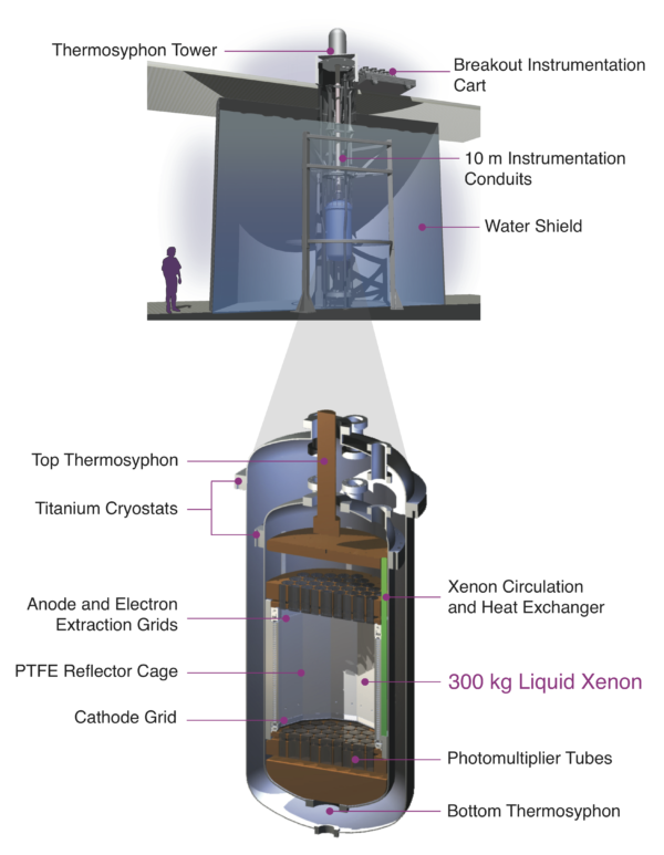 A diagram of the LUX detector. Image credit: LUX Collaboration, diagram by David Taylor, James White and Carlos Faham.