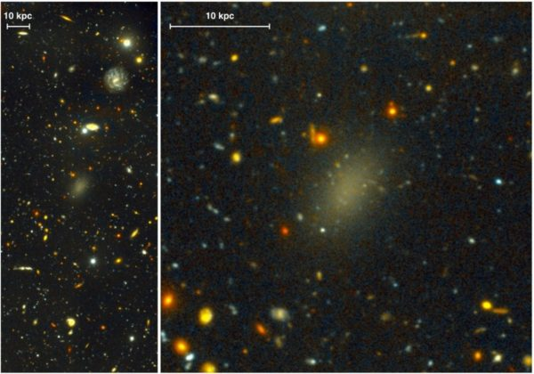 An image of galaxy Dragonfly 44, recently discovered to have the largest offset between normal matter and dark matter of any known, large galaxy. Image credit: Pieter van Dokkum, Roberto Abraham, Gemini Observatory/AURA.