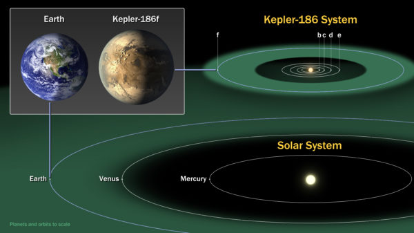 Kepler 186f is one of a great many candidates for a very Earth-like planet. Image credit: NASA/Ames/JPL-Caltech.