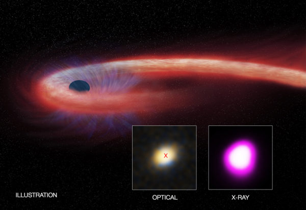 The longest-lasting tidal disruption event from a distant supermassive black hole has now surpassed a decade in duration. Image credit: X-ray: NASA/CXC/UNH/D.Lin et al, Optical: CFHT, Illustration: NASA/CXC/M.Weiss.