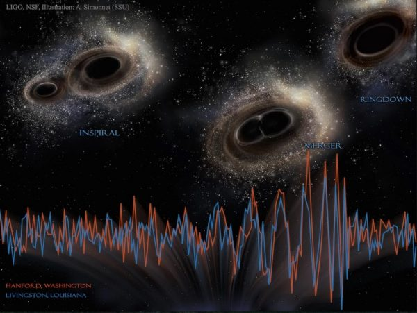 The 30-ish solar mass binary black holes first observed by LIGO are likely from the merger of direct collapse black holes. But a new publication challenges the analysis of the LIGO collaboration, and the very existence of these mergers. Image credit: LIGO, NSF, A. Simonnet (SSU).